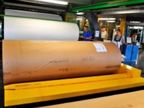 02_Projekt_Papier Industrie_Roller Transporter_pic 2
